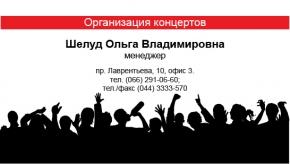 Шаблон визитки для организаторов концертов